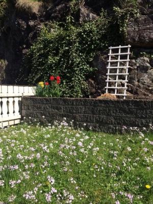Vakre tulipaner, arvet etter de forrige eierne